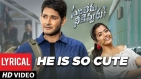 He\'s Soo Cute Video Song - Lyrical | Sarileru Neekevvaru