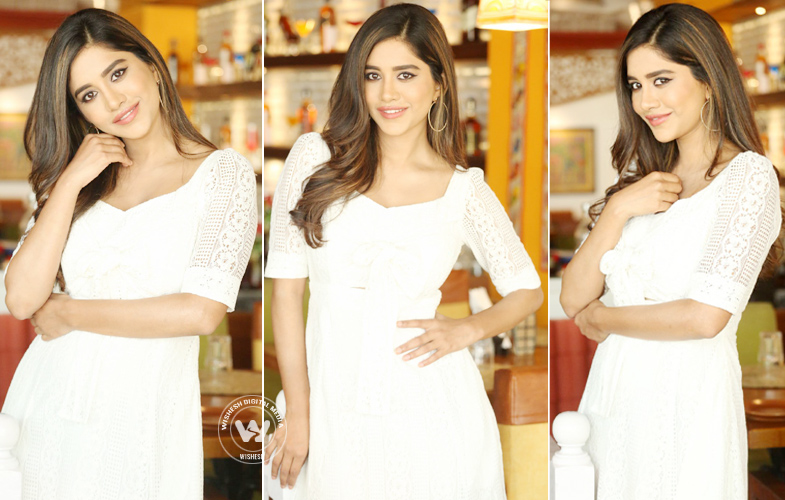 Actress Nabha Natesh Latest Photos