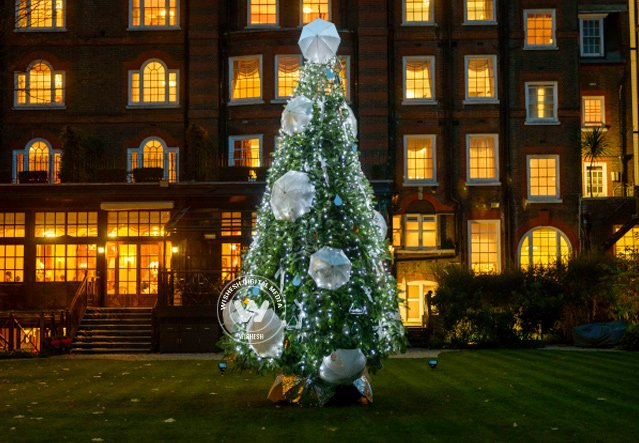 World's Most Amazing Christmas Trees