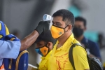 coronavirus, CSK, csk indian player 11 support staff test positive for covid 19, Uae