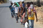 Govt Shall Look After The Stranded Migrants- 5 Points Orders From Supreme Court