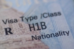 fiscal year, United States citizenship and Immigration Services (USCIS), fewer h 1b visas denied in the first quarter of fy20, Visa