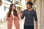 Manmadhudu 2 movie rating, Manmadhudu 2 telugu movie review, manmadhudu 2 movie review rating story cast and crew, Rakul preet