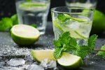 Recipe of Virgin Mojito
