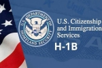 USICS on H1B visas, USICS latest report, uscis report claims more than 74 percent of indians accounted on h1b visas, Up government report