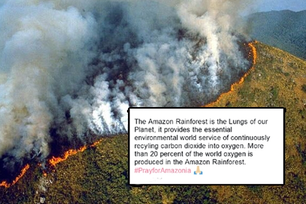 In Pictures: Devastating Fires in Amazon Rainforest Visible From Space